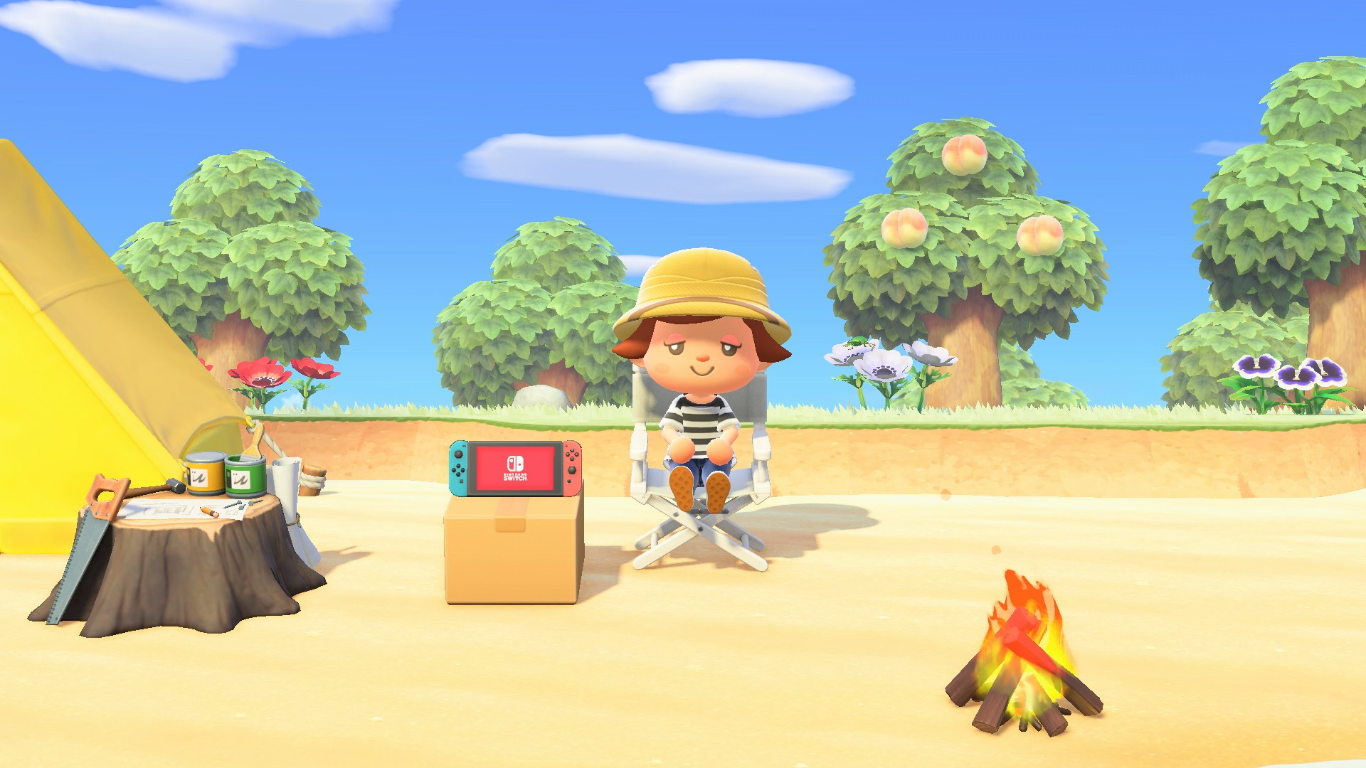 Switch in Animal Crossing: New Horizons